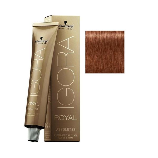 Schwarzkopf - Igora Royal Absolutes 7-560 Kumral-Altın Çikolata