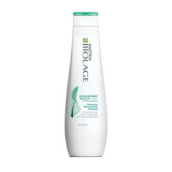 Matrix Biolage Scalpsync Yağ Dengeleyici Şampuan 250ml - Thumbnail
